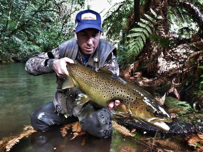 Öring Julian Fiskeguide Nyazeeland NZGuide 3