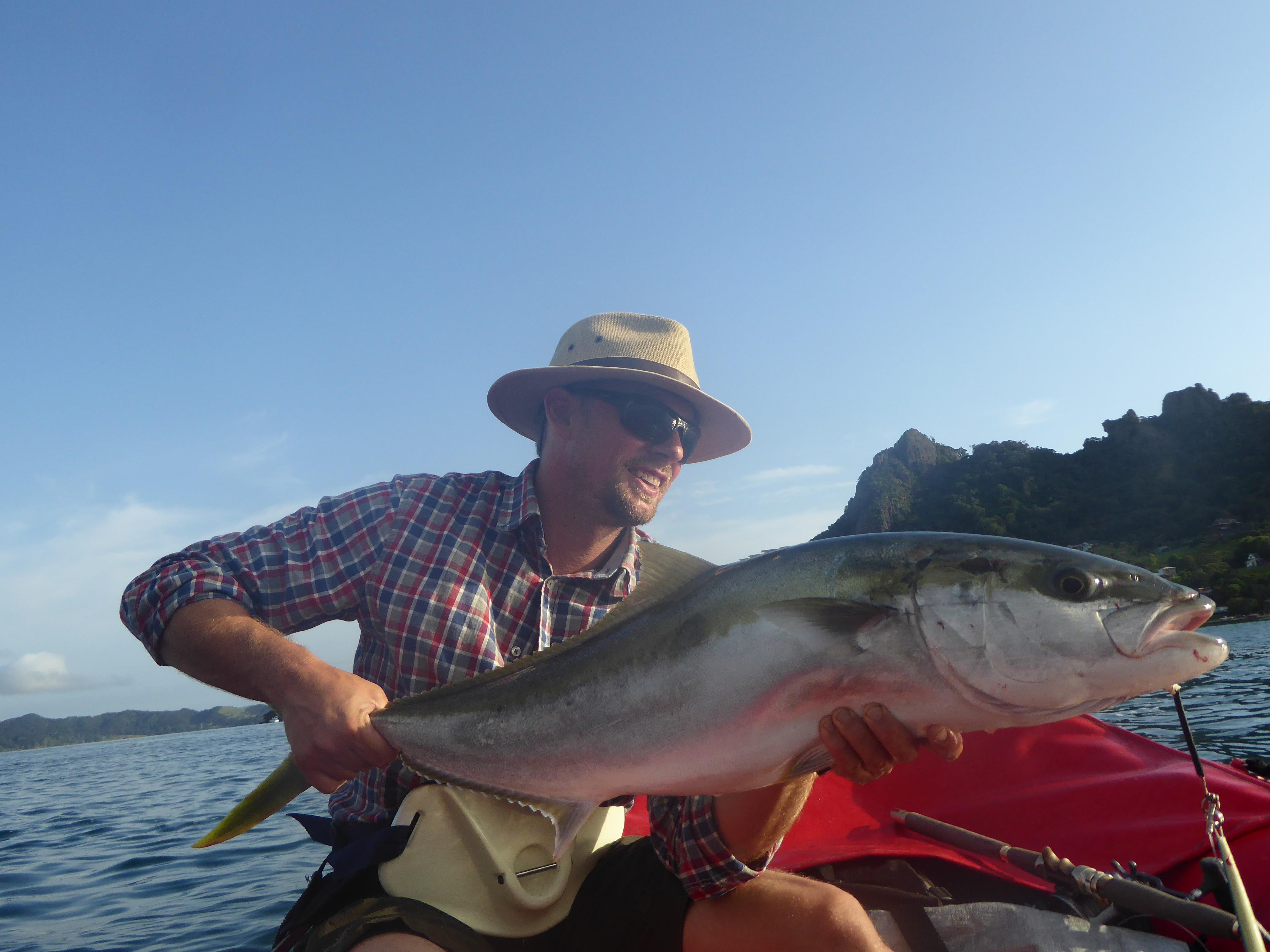 Fiske Nyazeeland 10 kilo Kingfish