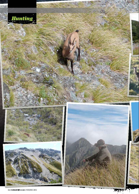 coast 2 coast hunting NZ_Sida_2