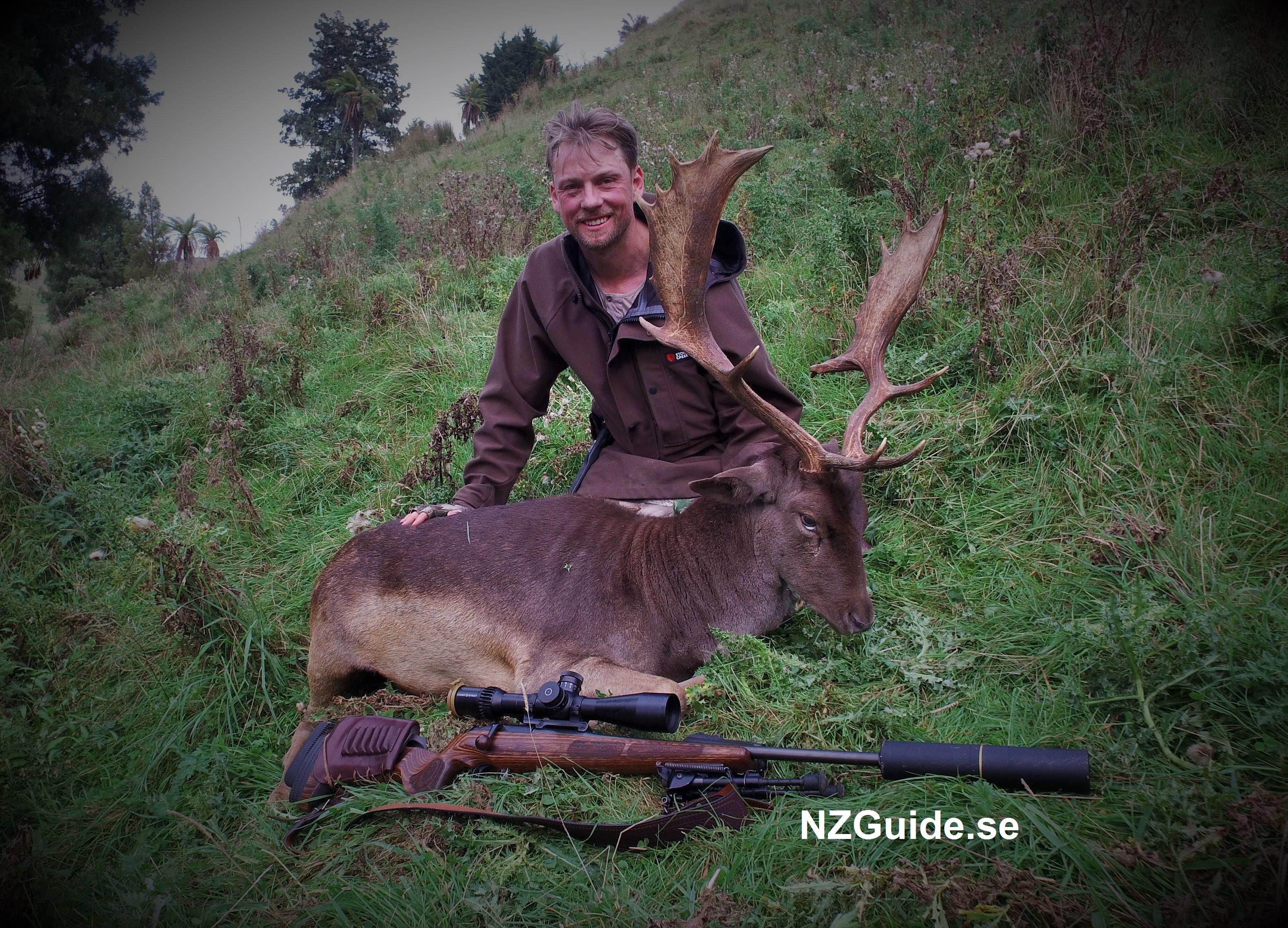 Dovhjort NZGuide.se Nyazeeland